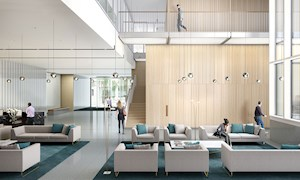 Modern Luxury Reception Lobby - Mace Group