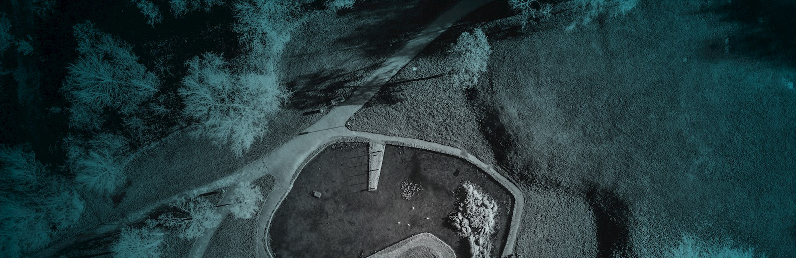 Aerial View of a Field Covered in Light Blue - Mace Group