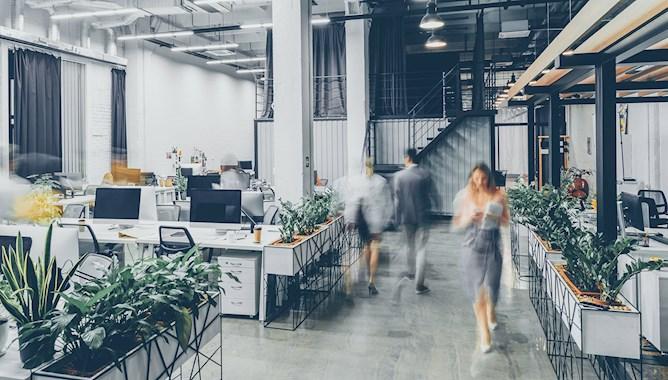 Modern office, staff walking around - Mace Group