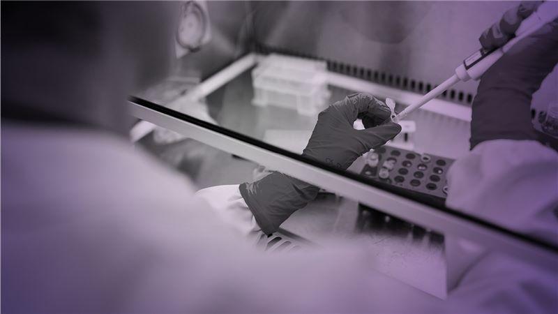 Covid staff testing in laboratory - Mace